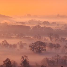 Misty Reading Sunrise