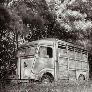 lifestyle vehicle Van France.jpg