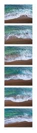 shore montage vertical.jpg