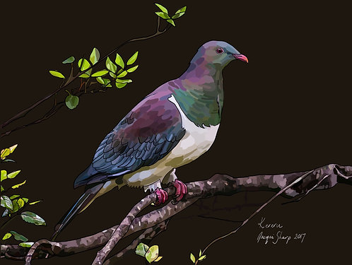 Kereru (Wood Pigeon) on Photo Block