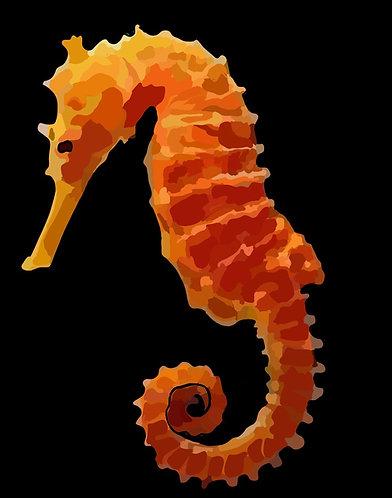 Seahorse on Photo Block