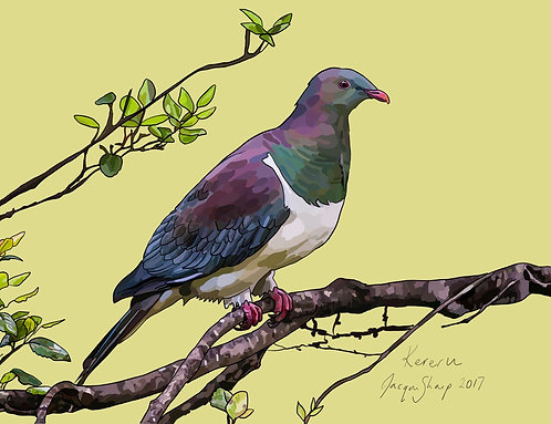Kereru (Wood Pigeon) on Photo Block