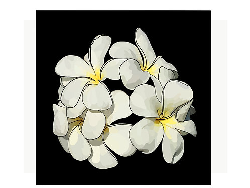 Frangipani with lines on Canvas