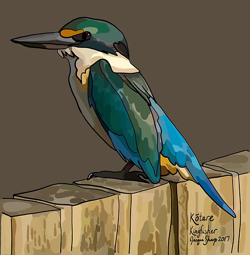 Kōtare (Kingfisher) on Photo Block
