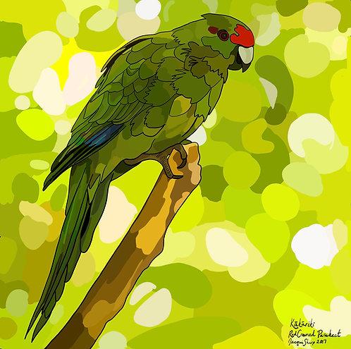 Kakariki (Red Crowned Parakeet) on Photo Block