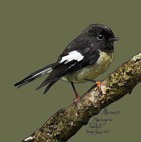 Miromiro (Tomtit) on Photo Block