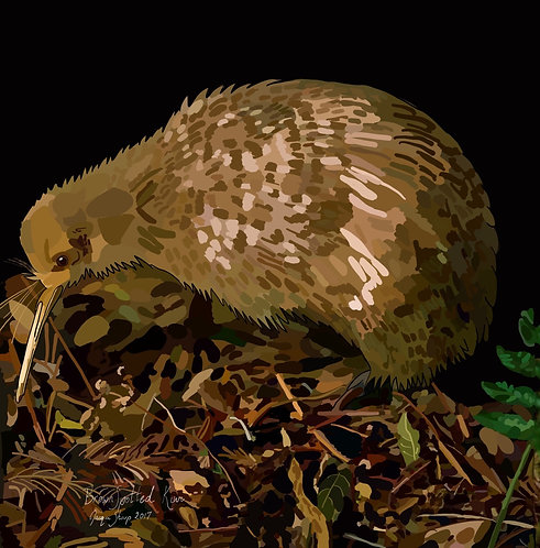 Brown Spotted Kiwi on Photo Block