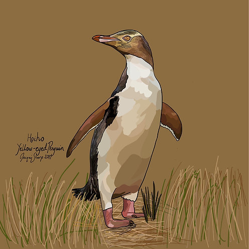 Hoiho (Yellow-eyed Penguin) on Photo Block