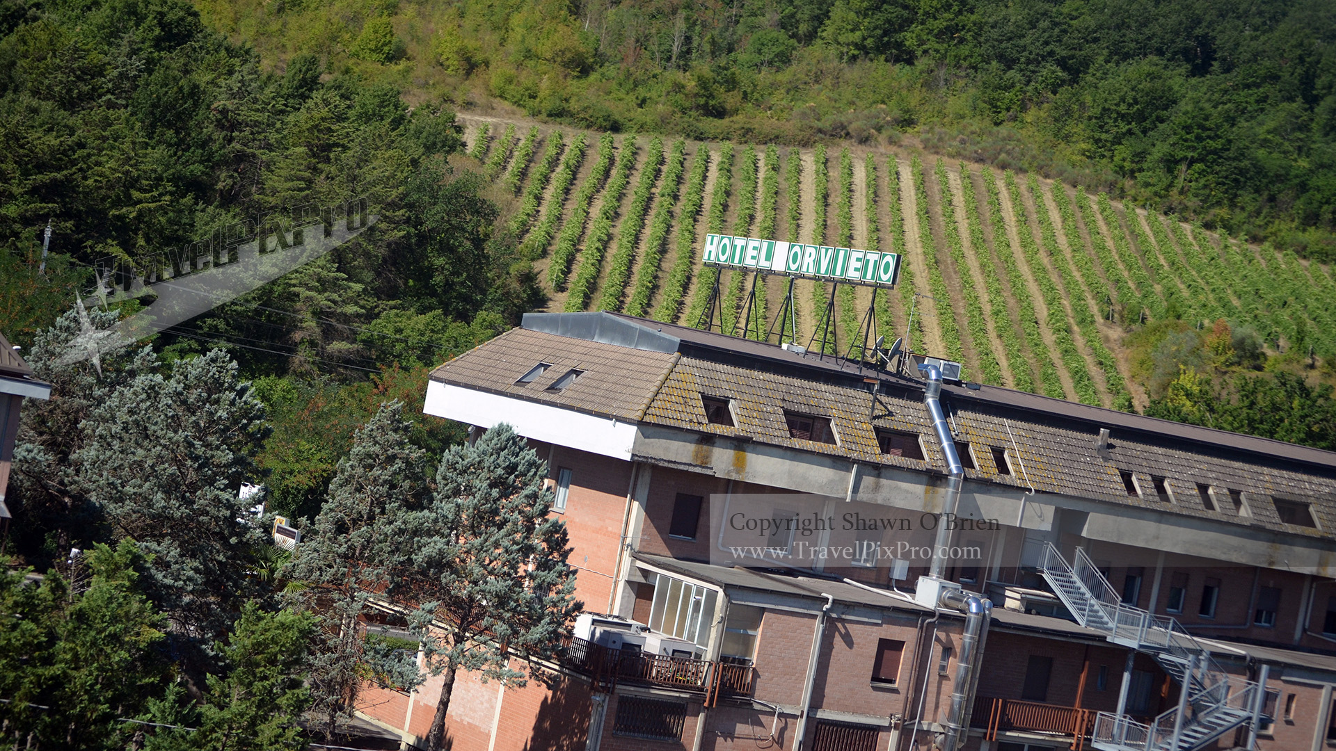 Italian Hotel and Vineyard