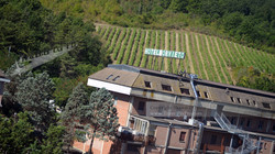 Italian Hotel and Vineyard