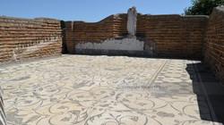 Temple Floor Mosaic Ostia Antica