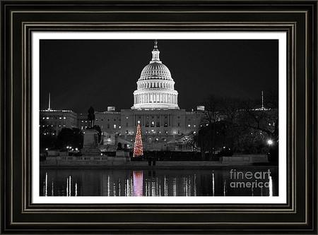 US Capitol Christmas Tree Reflection