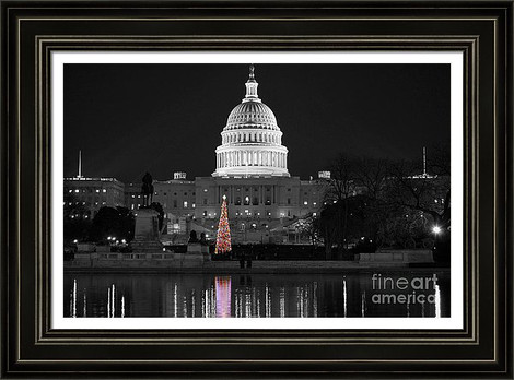 US Capitol Christmas Tree Reflection