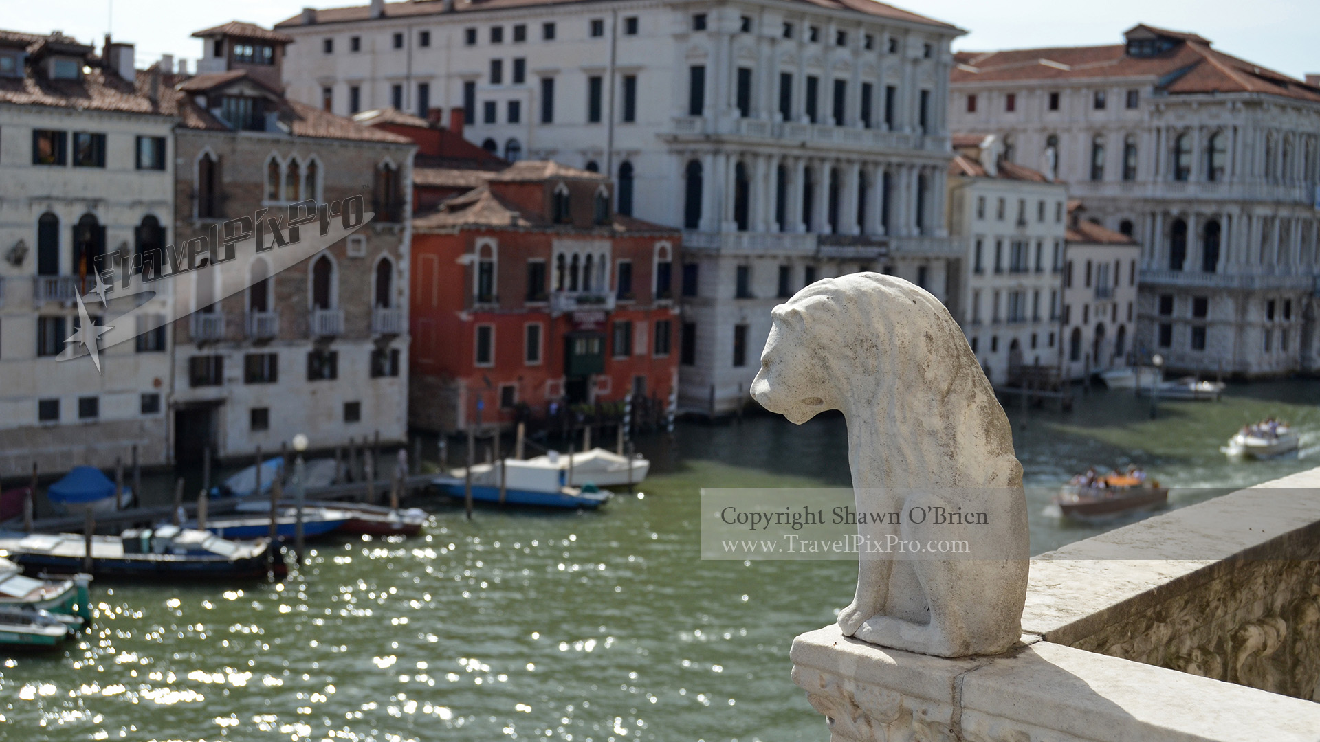 Venice Lion Overlooking Grand Canal