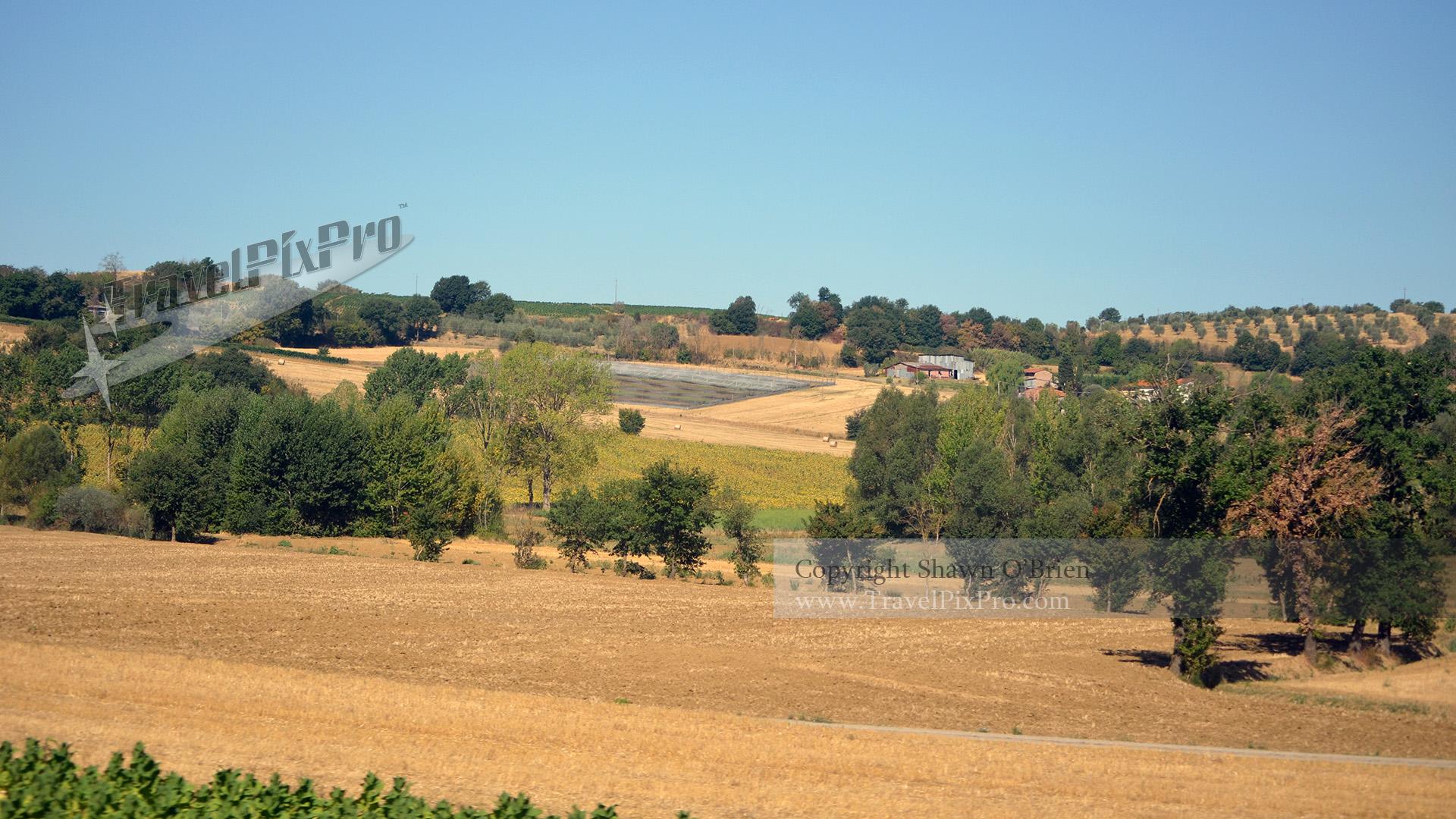 Italian Farmaland