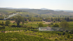 Italian Farm Landscape