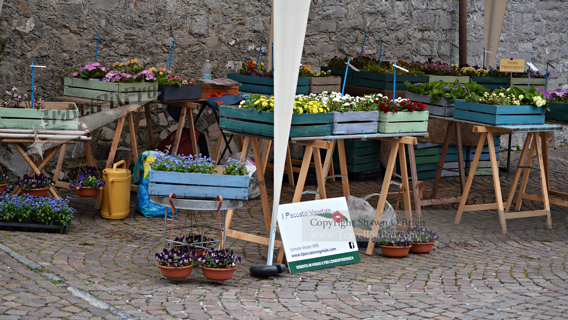 Lake Como Flower Market