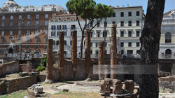 Largo di Torre Argentina Rome