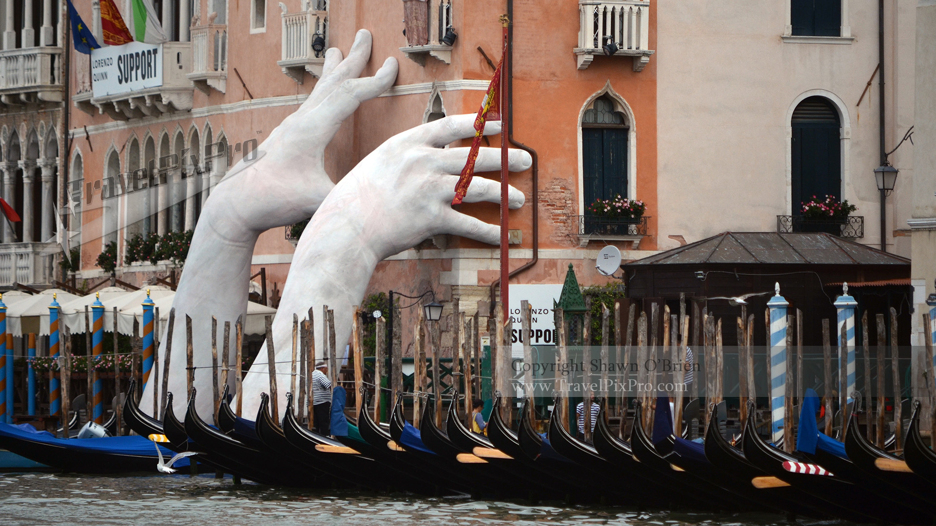 Helping Hands of Venice Grand Canal
