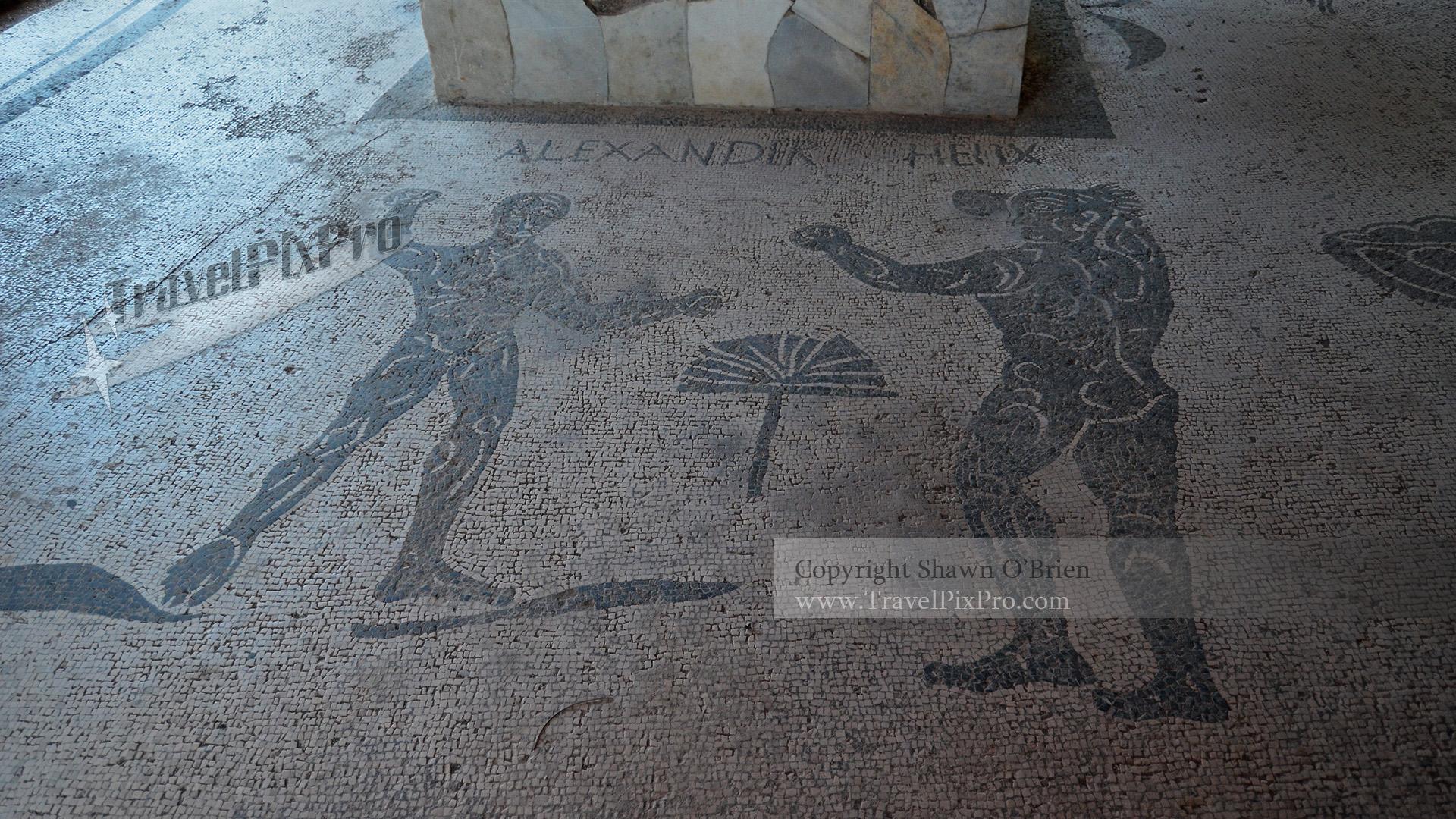 Caupona di Alexander Helix Mosaic
