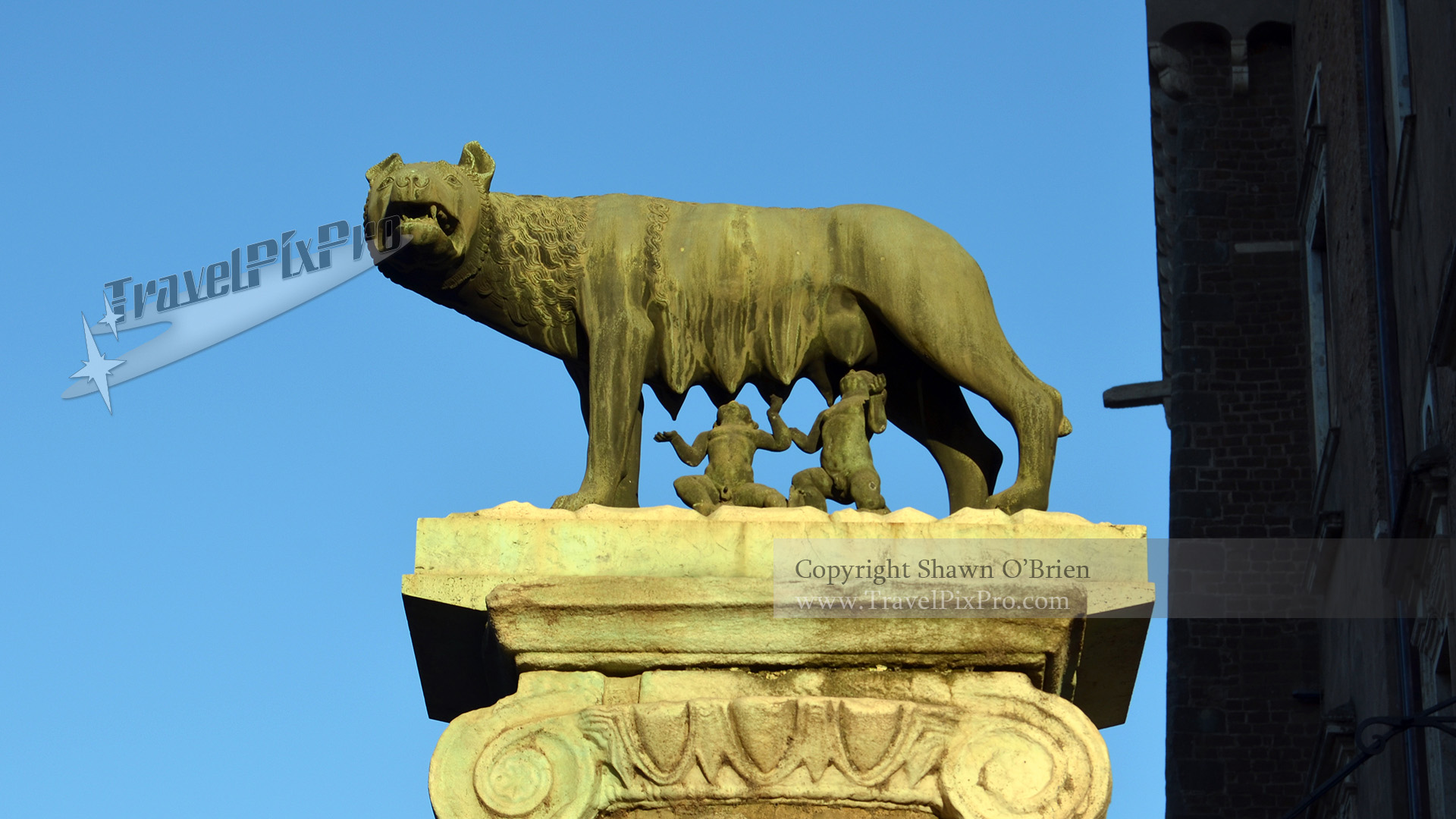 Romulus and Remus She Wolf Statue