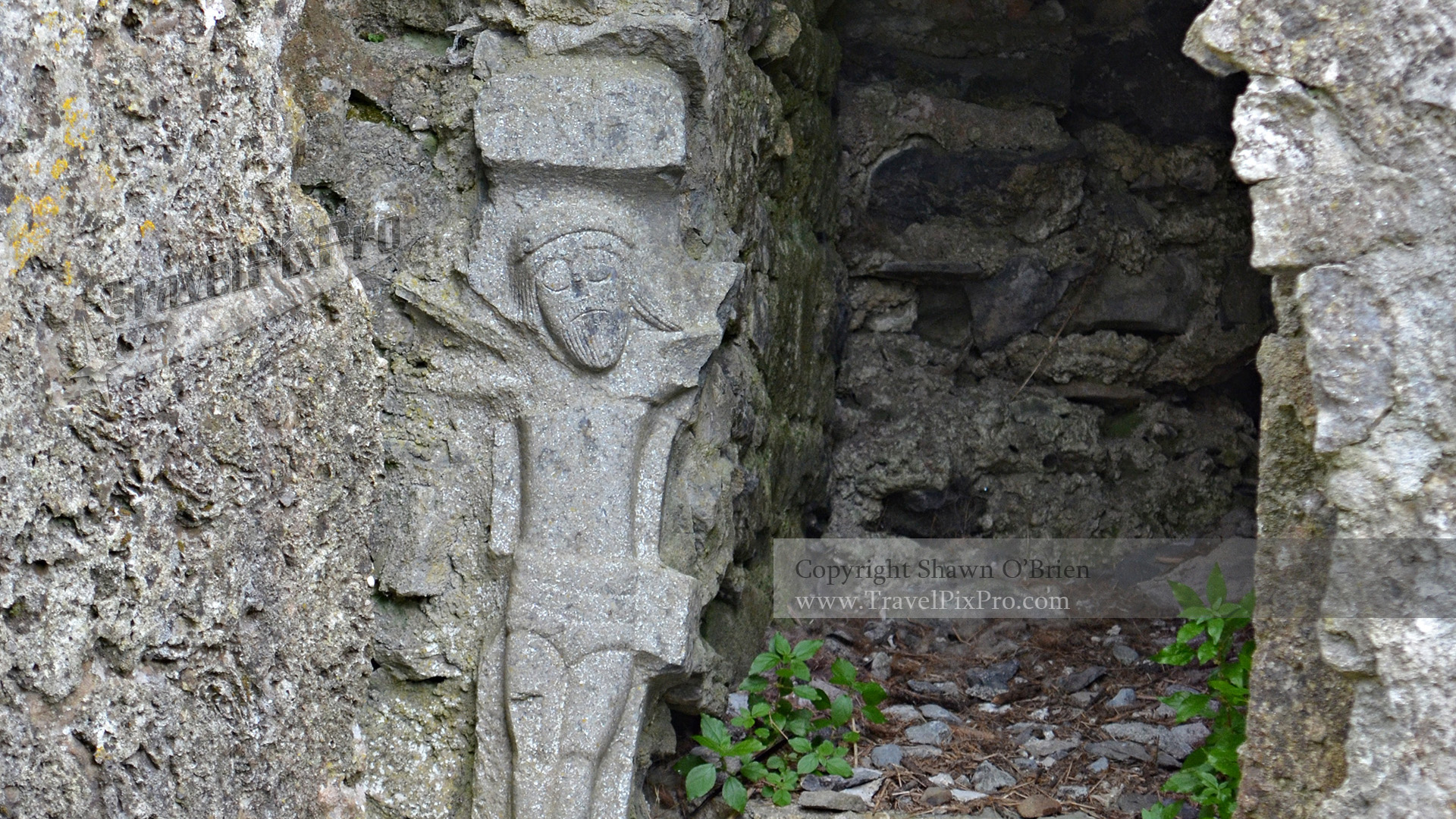 Carving in Ross Errilley Friary