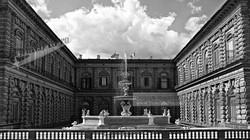 Medici Pitti Palace Fountain Florenc