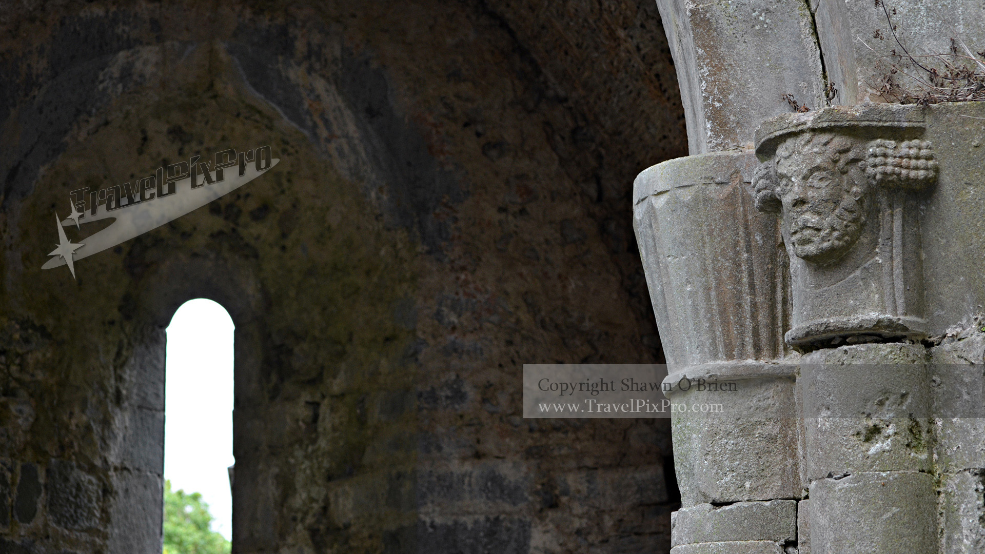 Corcomroe Abbey Columns and Window