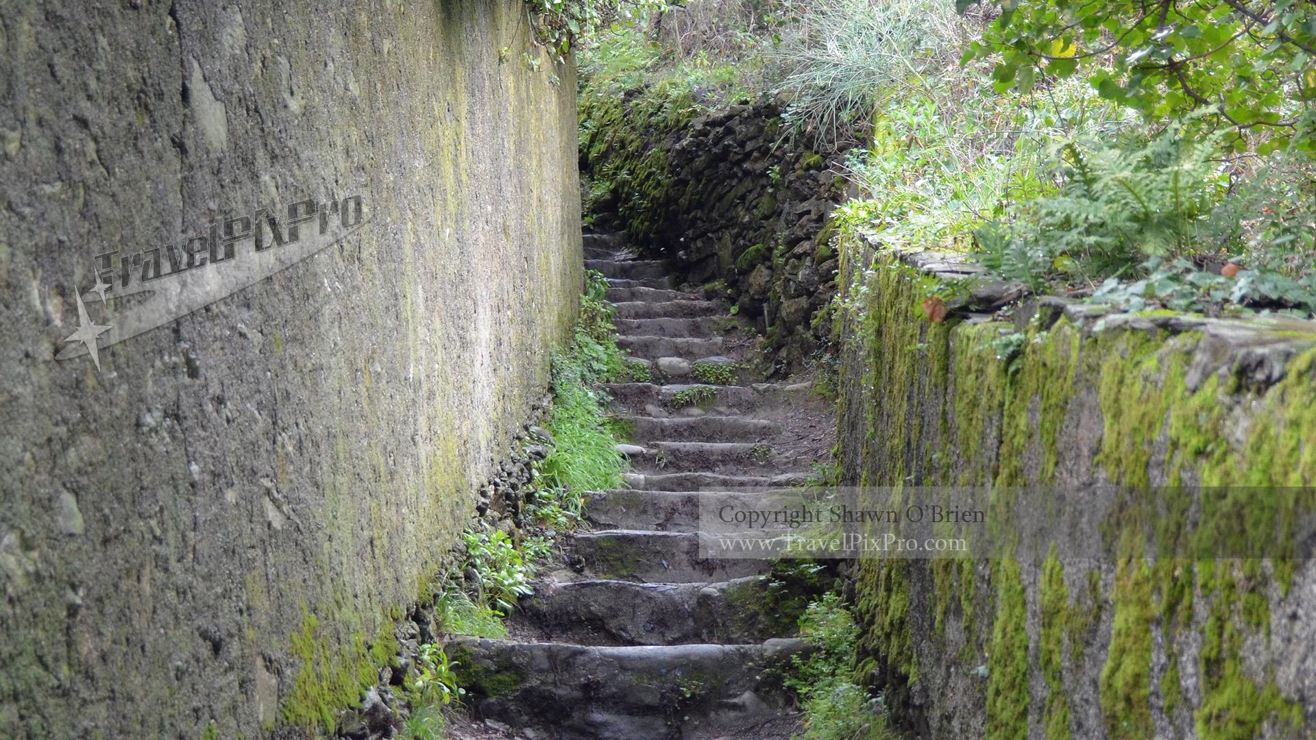 Cinque Terre Hiking Pathway