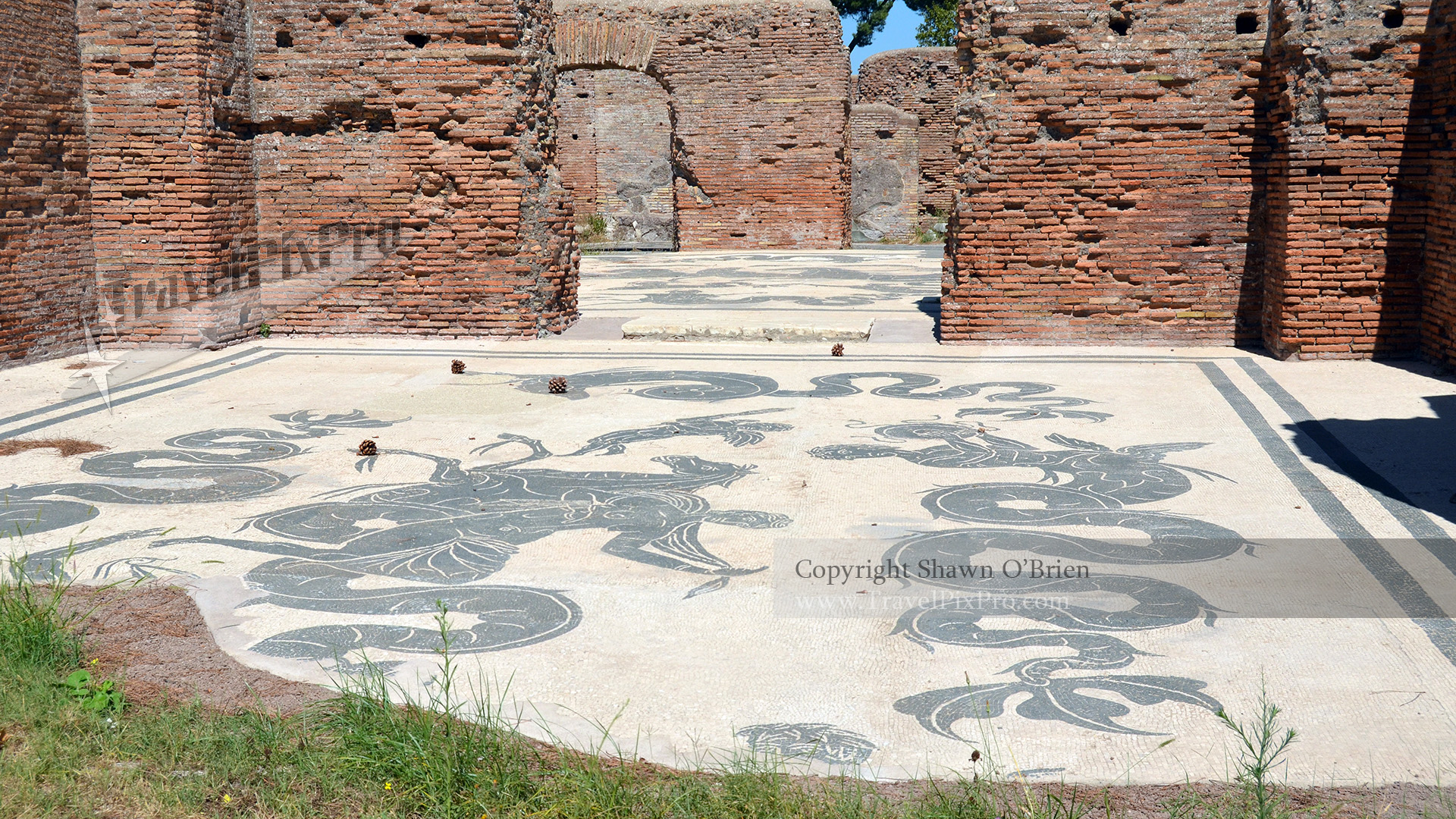 Ostia Antica Mosaic