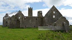 Ross Errilley Friary