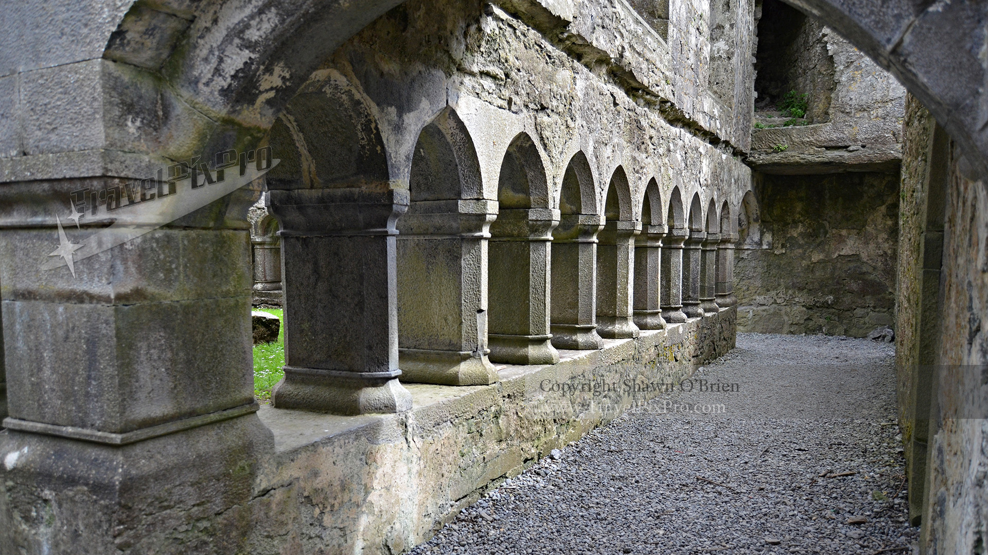 Ross Errilley Friary Cloister Arcade