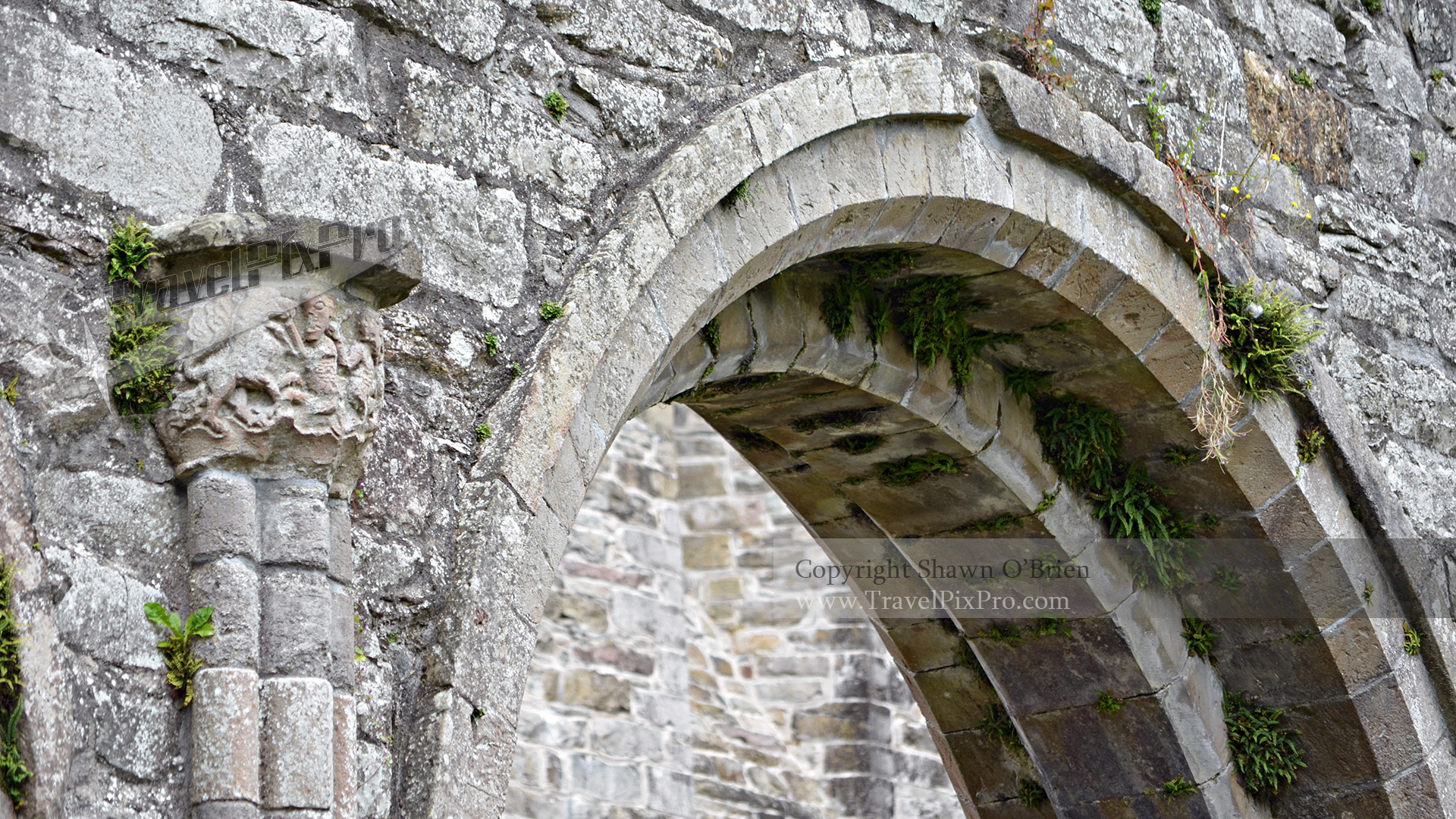 Boyle Abbey Arch & Carving
