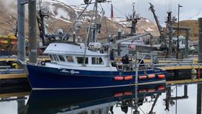 Subsea Cable Routing Survey Commences