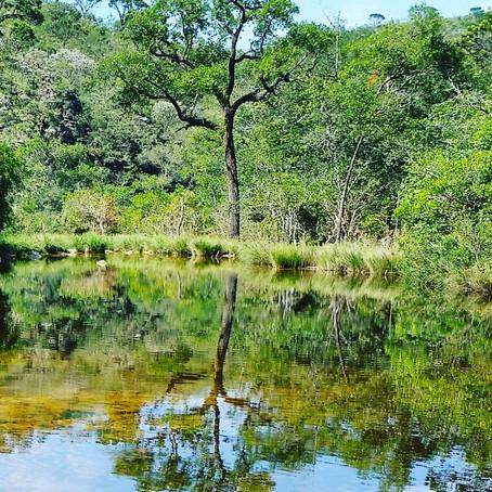 Informações REABERTURA do Parque Nacional Serra da Canastra
