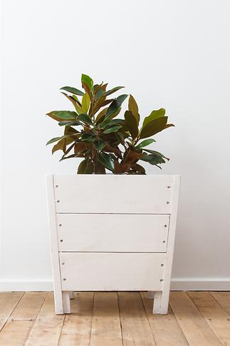 New planter box feb 2021 white.png