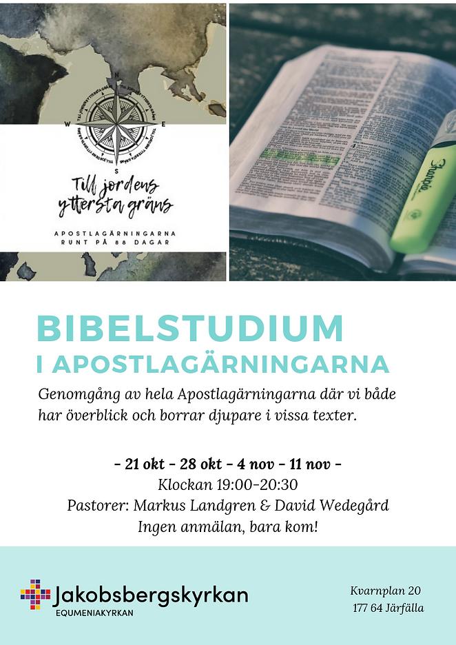 BIBELSTUDIUM_I_APOSTLAGÄRNINGARNA.png