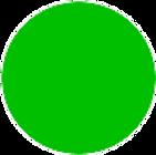 verde trasparente_79%.png