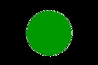 cerchio verde.png