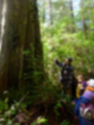 Tofino children's nature program, West Coast Nature Kids