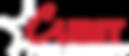 Wayland Web Header Logo.png