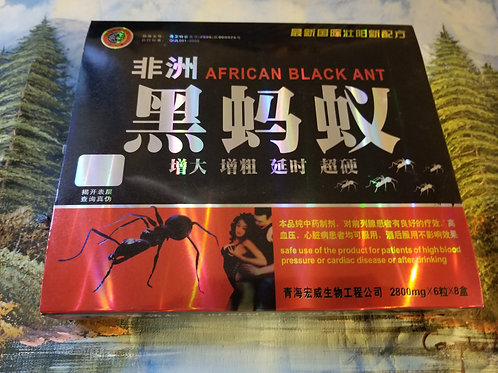 African Black Ant one large box 6 small boxes 36 pills