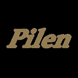 pilen logo u bagrund.png