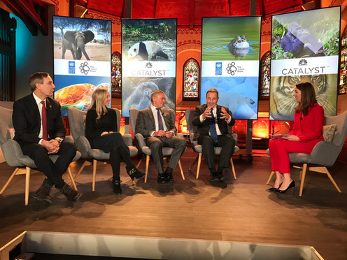 UNDP Panel in Davos for CNBC Catalyst