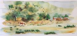 'Oak Glen Ranch'