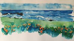 'An Ocean of Flowers'