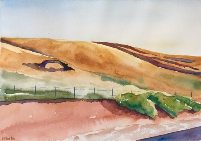 'Loch Ness Tree'