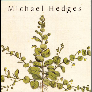 Michael Hedges - Michael Hedges