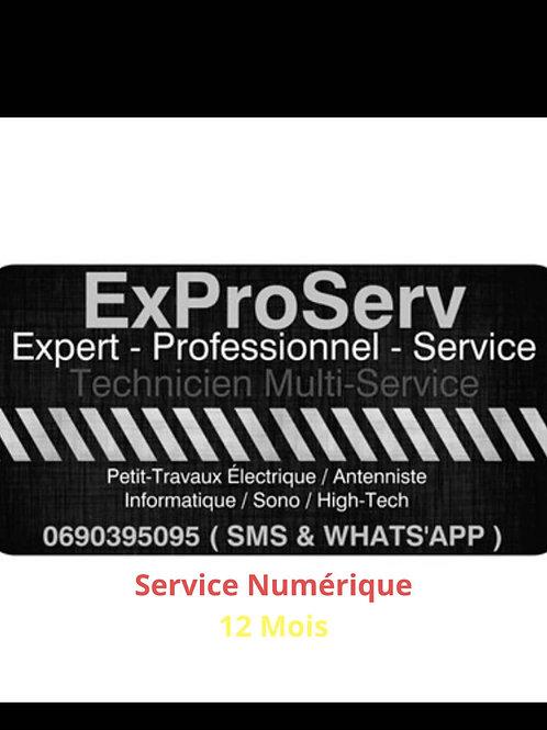 Service Numérique 12 Mois.