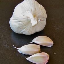 Garlic - a Food, a Medicine, an Aphrodisiac?!